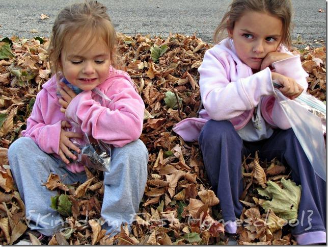fall leaf walk and paint